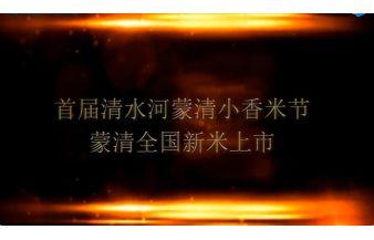 首届清水河亚博老虎机平台小香米节暨亚博老虎机平台全国新米上市活动 [宣传片]