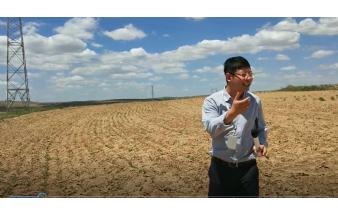 刘俊承谈谷子的春种秋收与人生